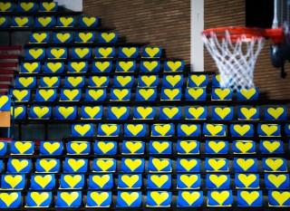 """Dragostea pentru echipa """"galben-albastră!"""